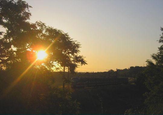 Wczesnoporanne słoneczko dodaje sił przed pracowitą służbą na torach