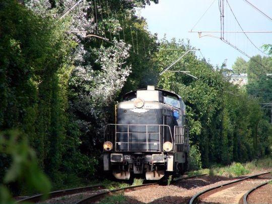 SM42 chowa się w cieniu przystanku Szczecin Łękno