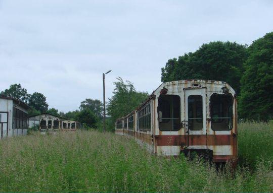 Przy zarośniętych peronach pozostało 6 wagonów Bxhpi