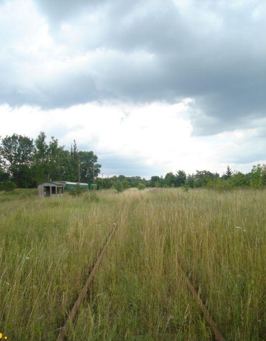 Widok na tor w kierunku Kalisza Pomorskiego, w oddali po lewej stronie widoczne są wagony mieszkalne byłej Wrocławskiej DOKP
